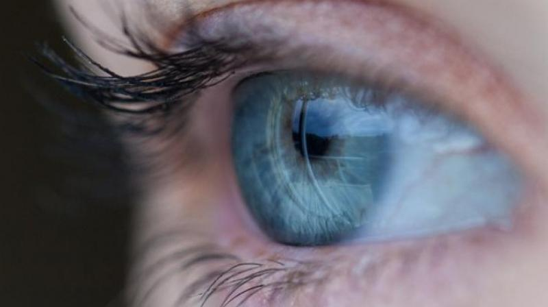 Retinal diseases such as age-related macular degeneration (AMD) and diabetic macular edema (DME) are increasing at a rapid pace in the country.   (Representational Image)