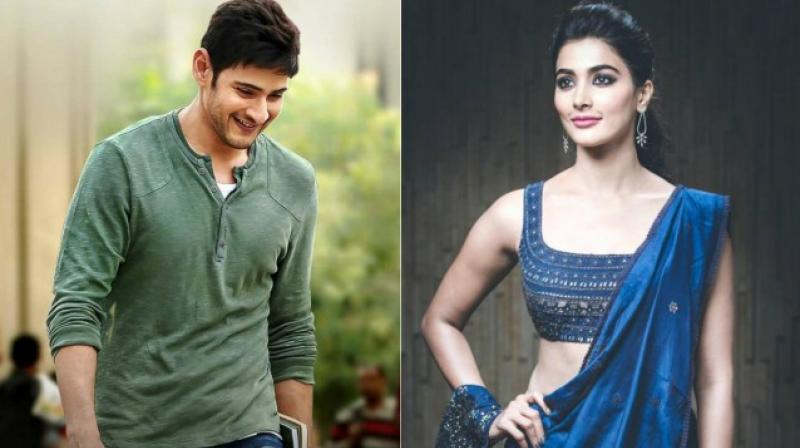 Pooja Hegde confirms doing her next film with Mahesh Babu