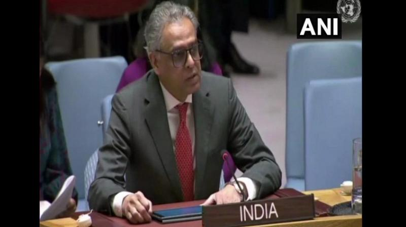 Syed Akbaruddin on Friday said the states who are 'apologists' for terrorists will continue to provide alibis to justify their actions and inaction. (Photo: ANI)