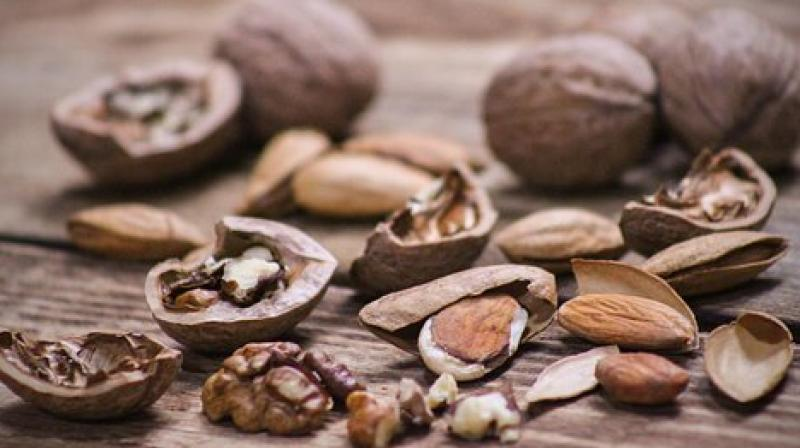Eating Nuts May Prevent Colon Cancer Recurrance