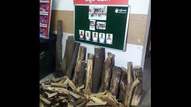 Banashankari police have arrested five sandalwood thieves and unearthed 138 kg of wood pieces worth around Rs 10 lakh.