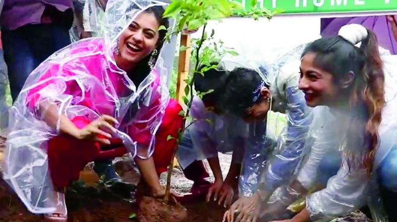 Tanishaa and Kajol planting trees at the event.
