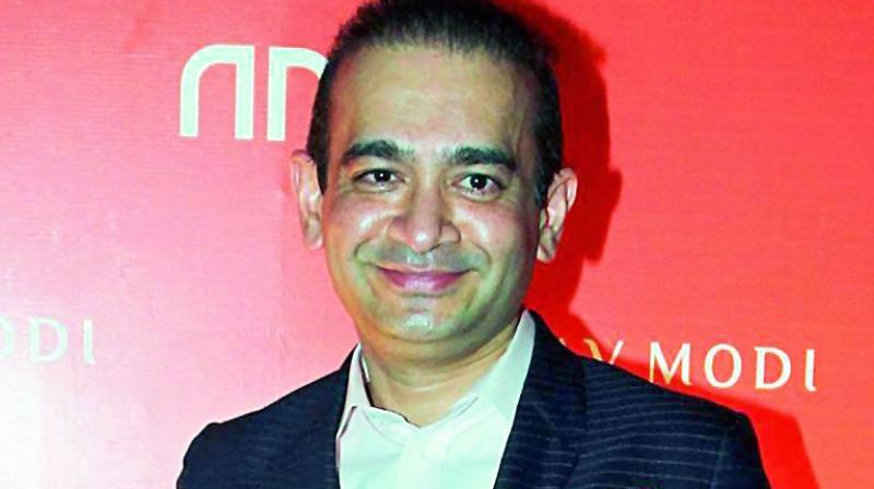 The ED has identified Bhansali as the 'second-in-command' in the Firestar Group after Nirav Modi. (Photo: File | PTI)