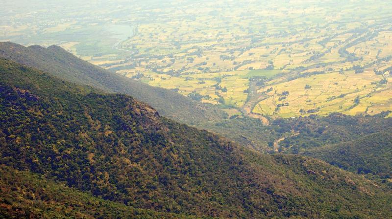 Kolli hills. (Source: Internet)