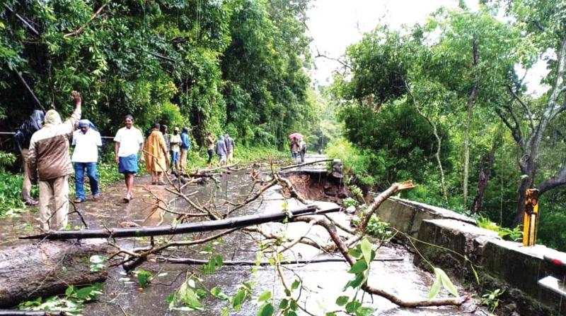Traffic in the Kottayam – Kumarakom, Vaikom – Thalayolaparampu, Pala – Erattupetta, Changanacherry – Alappuzha MC road were disrupted owing to the floods.