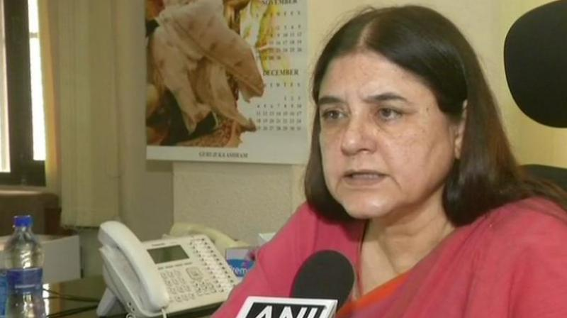 Maneka Gandhi (Photo: Twitter | ANI)
