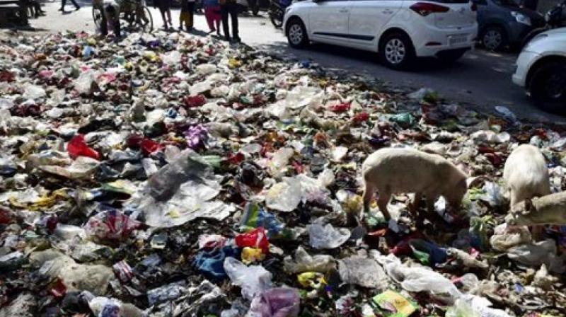 (Representational image) he compost will be distributed in Kolar, Chikkaballapura and Ramanagara districts on a pilot basis.
