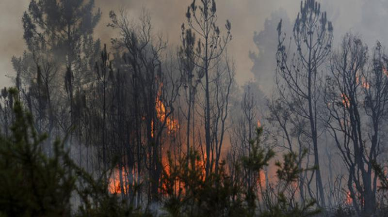 A view of a forest fire from reaching the village of Figueiro dos Vinhos central Portugal. (Photo: AP)