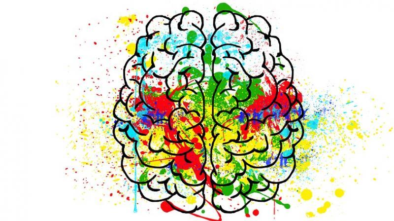 Não trái thiên về ngôn ngữ học hơn