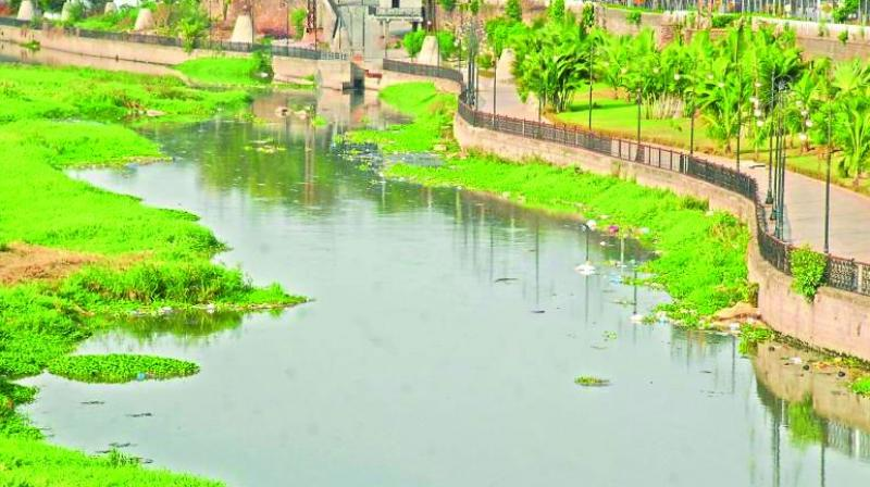 A division bench comprising Acting Chief Justice Raghavendra Singh Chauhan and Justice A. Rajashekar Reddy was dealing a batch of petitions which sought directions to the authorities to take action towards rejuvenating the several lakes in the city which were polluted.