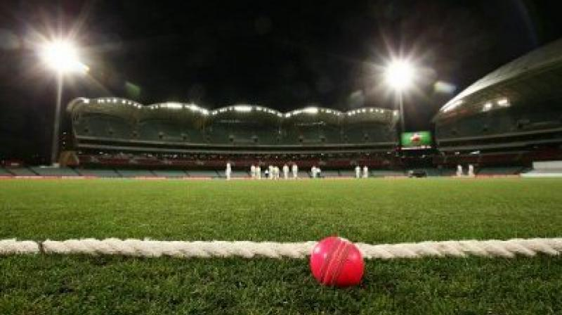 India's first day-night Test match is one of the most highly anticipated things this season. (Photo: Twitter)
