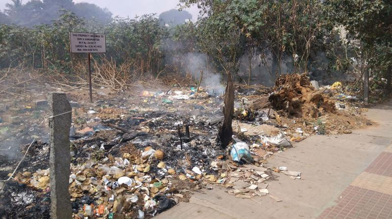 A big heap of garbage set on fire in BTM Layout in Bengaluru—DC
