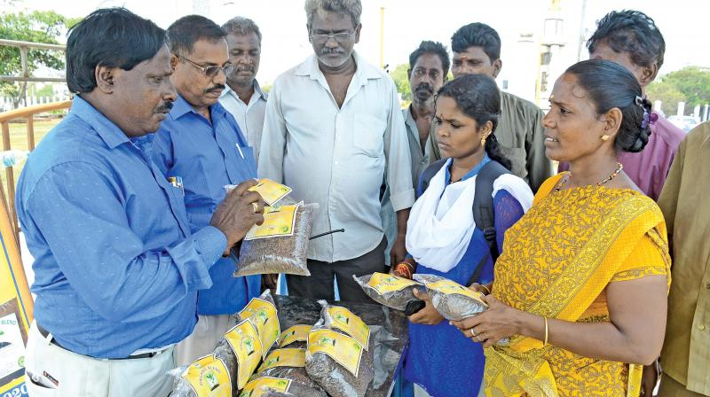The manure packets  manufactured and sold by the Chennai corporation. (Photo: DC)