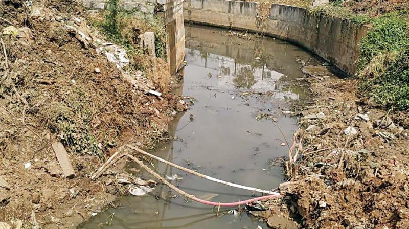 The BBMP officials claim they are cash strapped and waiting for the budget session to take up lake restoration.