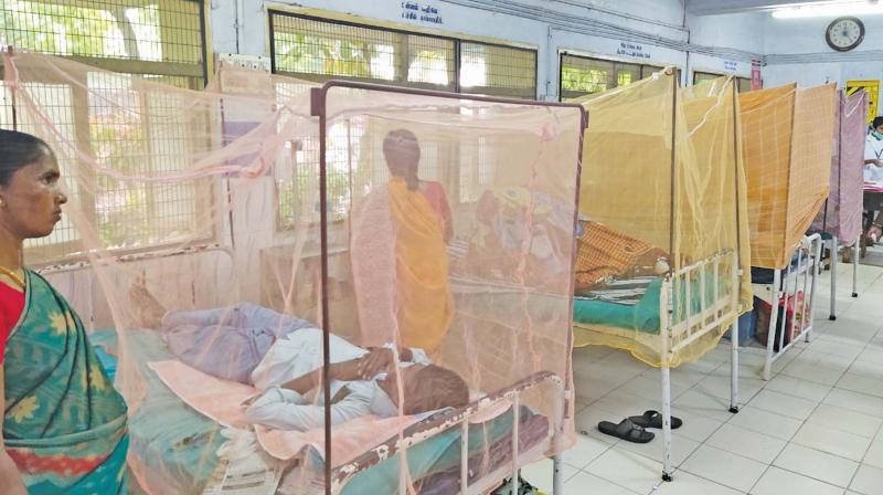 Patients with suspected cases of dengue treated in  isolation wards at Kancheepuram government hospital.