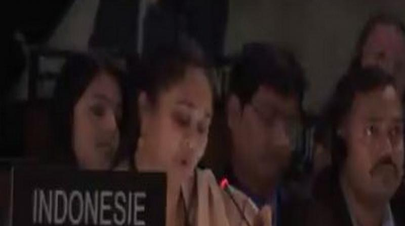"""We condemn Pakistan's disappointing misuse of UNESCO to spew venom against India and politicise it,"" she added. (Photo: ANI)"