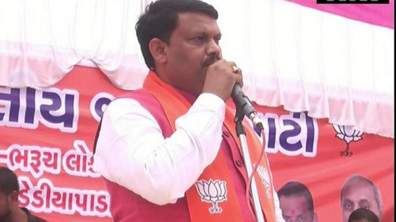 The BJP minister made the statement while addressing a public rally here in support of the Member of Parliament Mansukhbhai Vasava. (Photo: ANI)