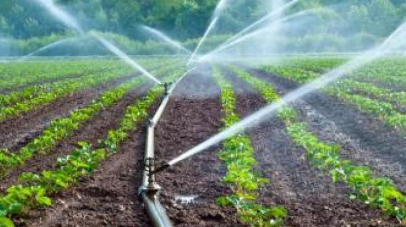 The public representatives stated that farmers under the SRSP were worried as many of them were not getting water for farming.   (Representational Image)