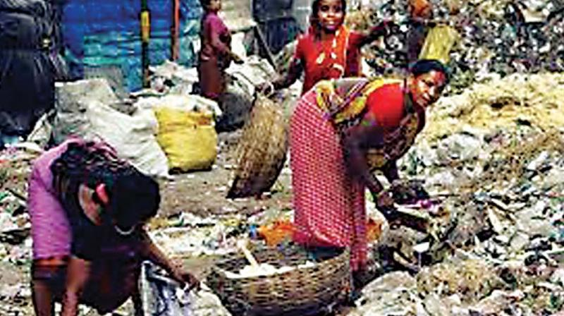 This is in the wake of corporators expressing doubt over handing over the task of dry waste collection to rag pickers in the new tender.