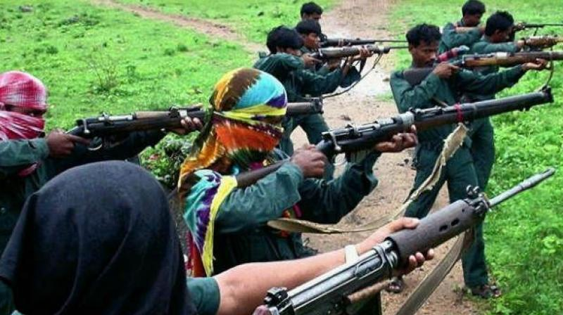 Maoists, Greyhounds Jawan killed in encounter on TS-Chhattisgarh border
