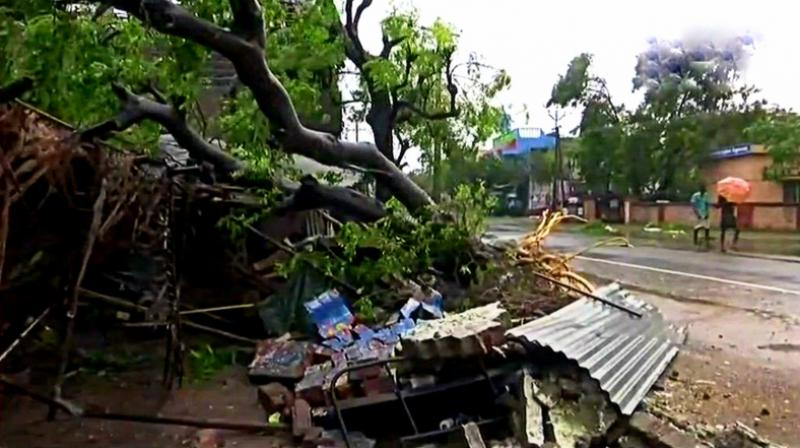 Trees uprooted and houses damaged in Nagapattinam in the overnight rainfall and strong winds which hit the town. (Photo: Twitter   ANI)