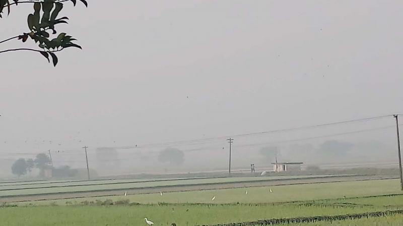 A thick layer of fog at Maduranthakam near GST road in Chengalpattu. (DC)