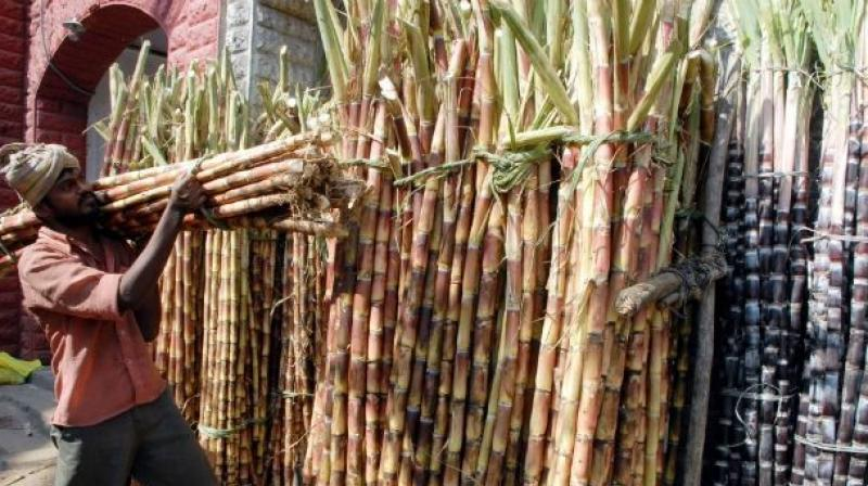 FRP, which is the minimum price that sugar mills have to pay to sugarcane farmers, is Rs 255 per quintal for the 2017-18 season.