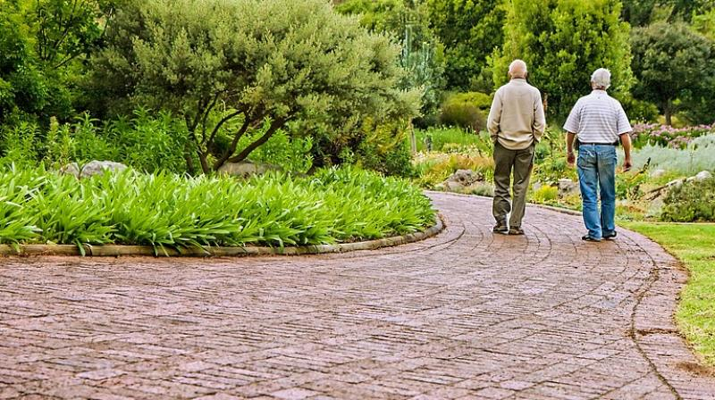 Aerobic Exercise Might Help Older Adults with Thinking Problems
