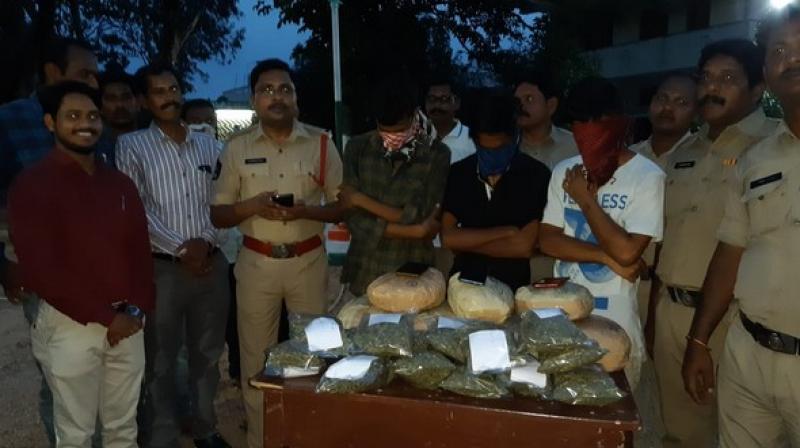The Andhra Pradesh police has arrested three BTech students and seized 10-kilogram ganja. (Photo: ANI)