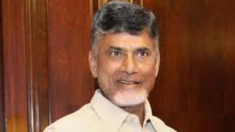 Chief Minister Chandrababu Naidu (Photo: PTI)