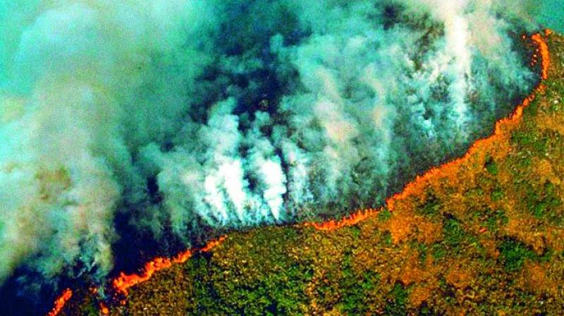 Actors Alia Bhatt, Dia Mirza, Disha Patani and many more shared these old images as they went viral under the hashtag #PrayforAmazonas as the wildfire rages on.