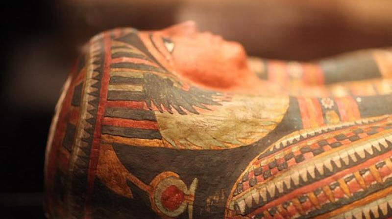 These mummies shared a mommy, DNA reveals