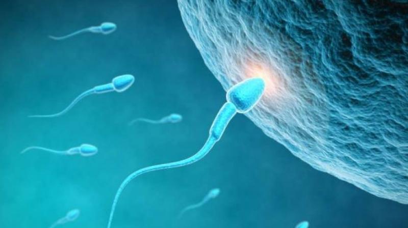 Man in space is sperm