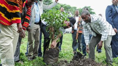 Prime Minister Abiy Ahmed created the initiative to help restore Ethiopia's landscape, which experts say is being eroded by deforestation and climate change. (Photo: Twitter/@PMEthiopia)