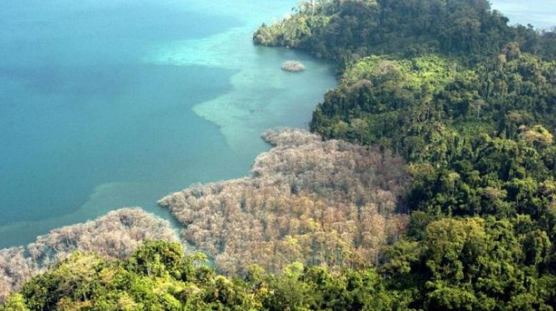 USA man 'killed in India by endangered Andamans tribe'