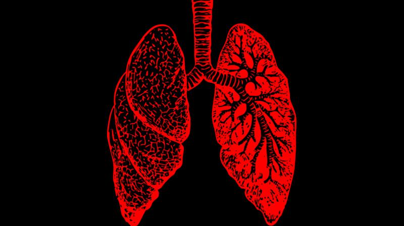 Testosterone replacement therapy could slow the progression of COPD. (Photo: Pixabay)