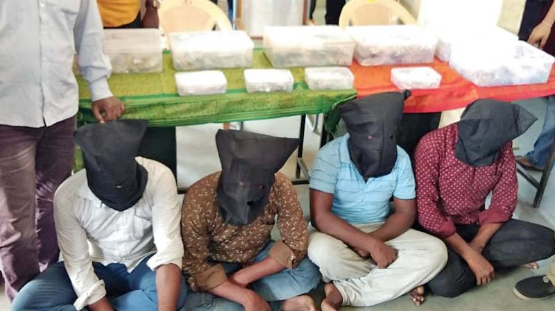 Four persons were arrested on Saturday for robbing the GM of idol theft case suspect Kiran Rao near Paranur checkpost in Kancheepuram.  The gang had escaped with  `11 crore worth gold jewels and RS 7.5 lakh from the car.Hunt is on for the other accused.  —DC
