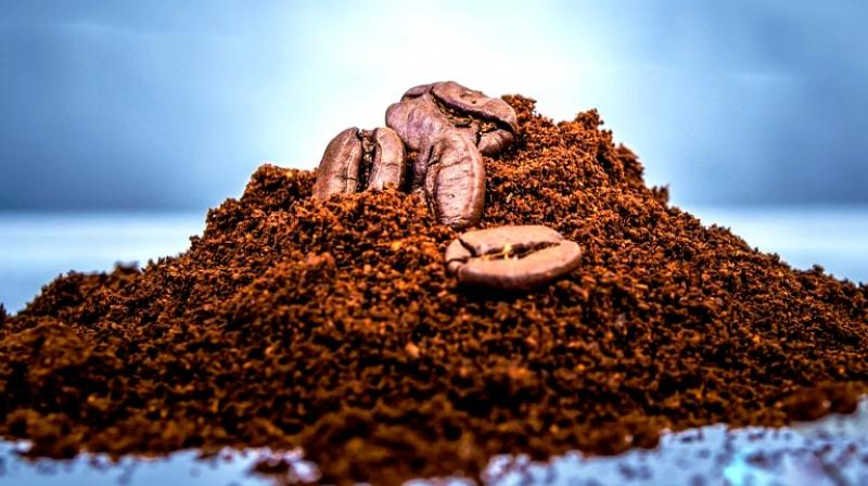 The presence of CGA in the coffee makes it both anti-inflammatory and keeps it free from bacteria. (Photo: Representational/Pixabay)