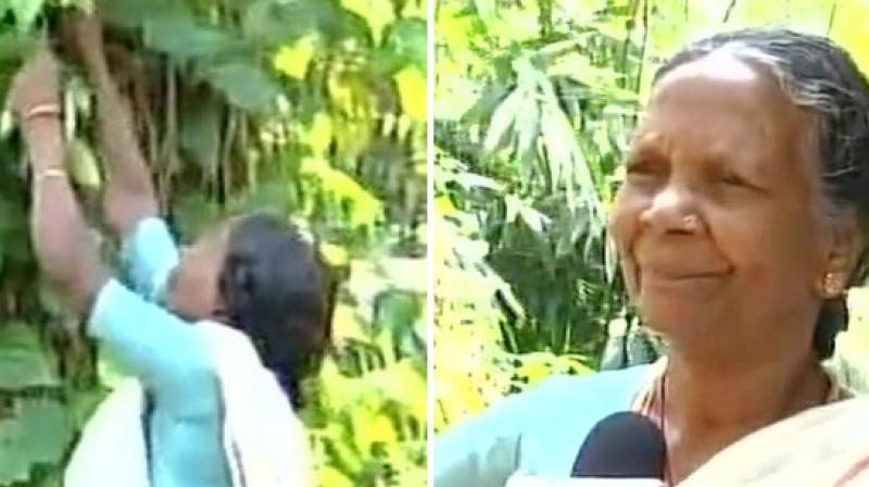 Amma, whose husband died two years back, stays alone in the forest and grows medicinal plants around her house; her two sons passed away and the third one is working in the Railways. (Photo: ANI)
