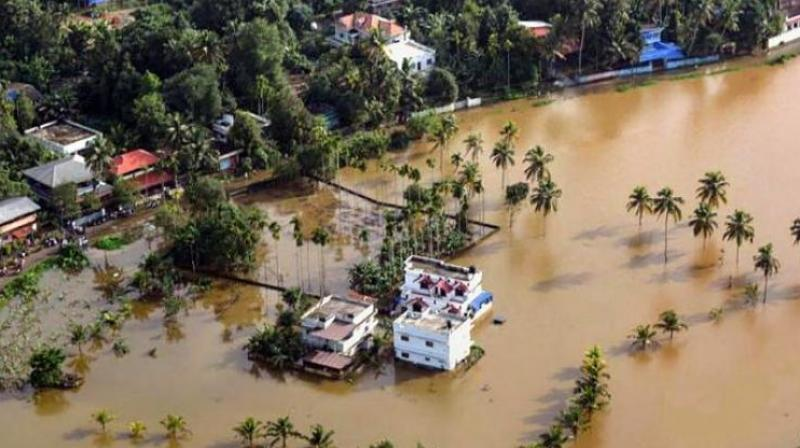 The floods caused loss to the tune of Rs.400 crore for the agriculture sector in Idukki, including the damage due to change in soil structure and loss of micronutrients.