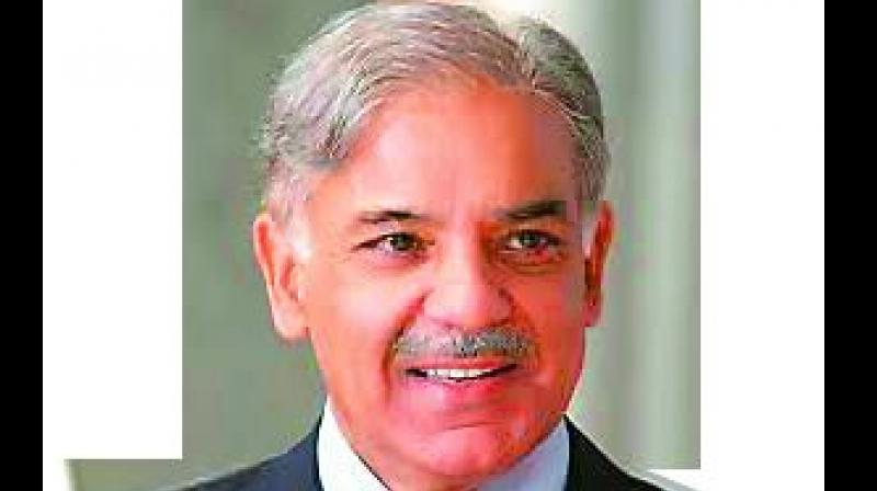 The ruling Pakistan Muslim League (Nawaz) on Tuesday elected Punjab Chief Minister Shahbaz Sharif as the acting President, replacing older brother Nawaz Sharif who was disqualified by the Supreme Court.