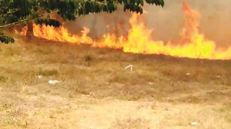 Huge fire in an empty plot of grass adjacent to the school.(Photo: DC)