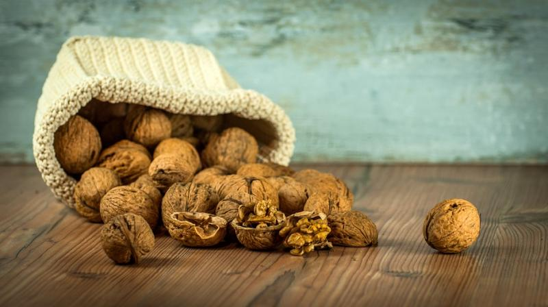 Walnut consumption resulted in higher relative abundance of three bacteria of interest: Faecalibacterium, Roseburia, and Clostridium. (Photo: Pixabay)