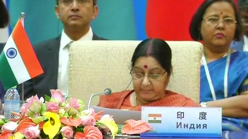 Sushma condemns terror at SCO FMs' meet in China