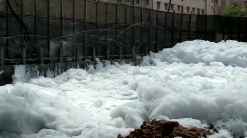 Bengaluru's Bellandur lake spills toxic foam, yet again