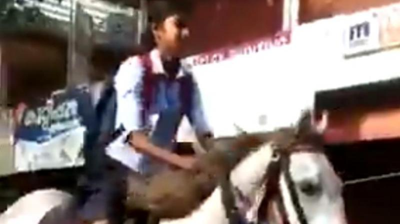 Kerala girl rides horse to school for 'special' reason; video goes viral