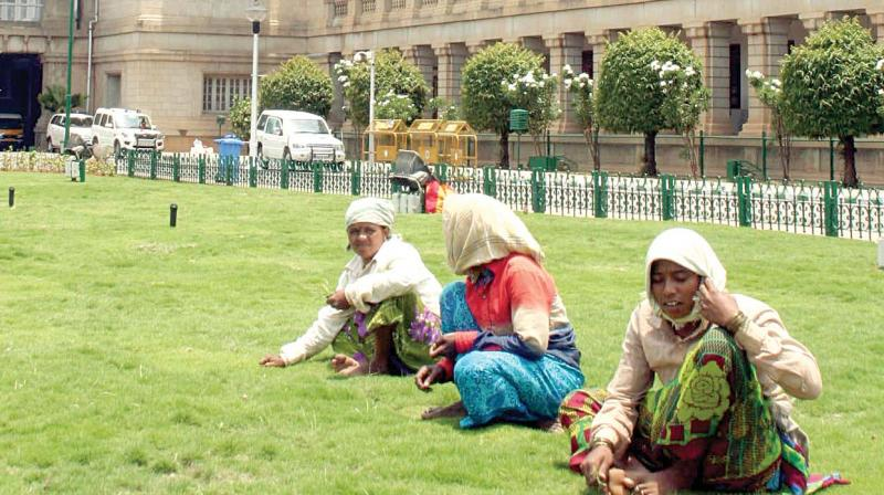 With Bengaluru receiving rain, workers busy with gardening work in front of Vidhana Soudha on Friday.(Photo: KPN)