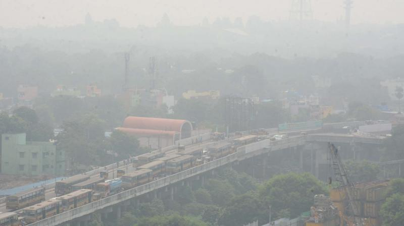 On National Pollution Control Day, the court directed the Delhi government to prepare an action plan for removing encroachments from the forest areas. (Photo: File)