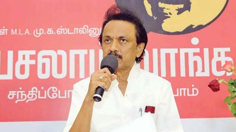 DMK working president and Leader of opposition M K Stalin