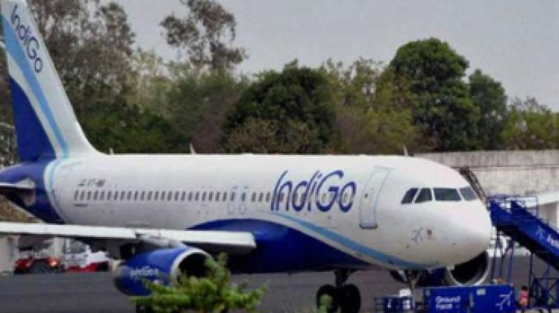 Directorate General of Civil Aviation grounded eight of IndiGo's A320neo planes along with 3 of GoAir due to Pratt & Whitney engine issues. (Photo: File)